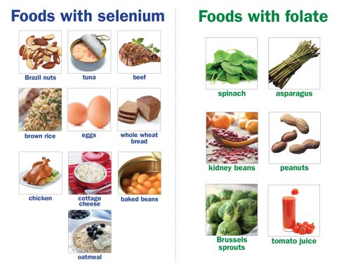 Folate_Selenium foods combo_small