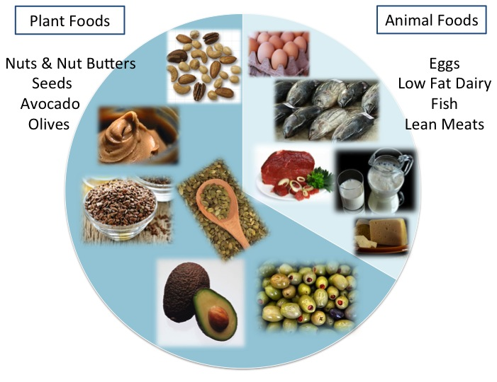 Plant and Animal Fats