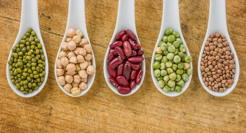 Swap plant protein for meat, feel full and eat less later, study suggests