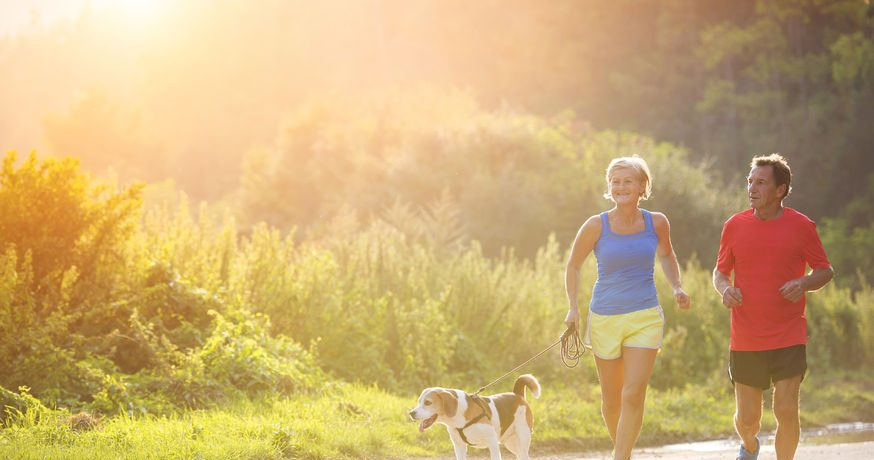 Physical Activity and its Effectiveness in Cancer Therapy