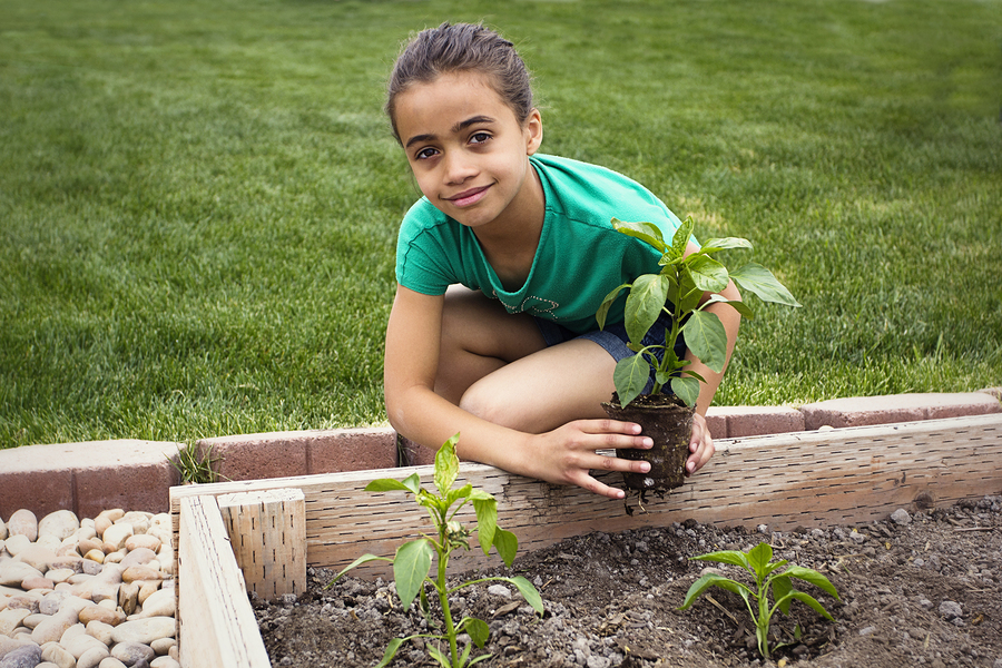 How Gardening Can Help Reduce Your Risk of Cancer – AICR Blog